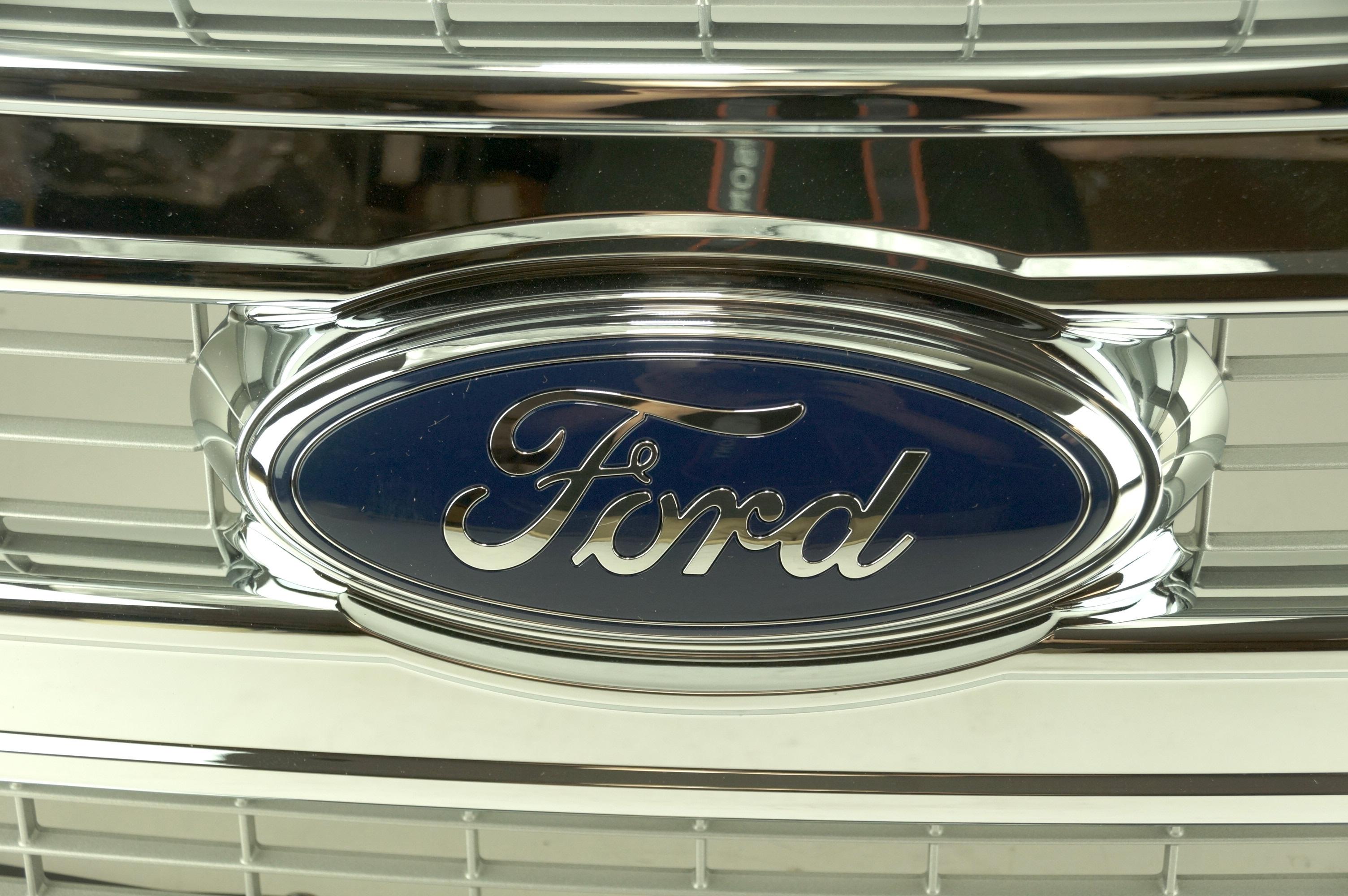 New Genuine OEM DL3Z8200BA Ford Front Grille Assembly w/ Emblem 09-14 F-150 XLT - image 5